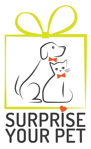 Surprise your pet