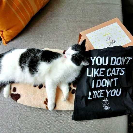 Katoenen tas met quote