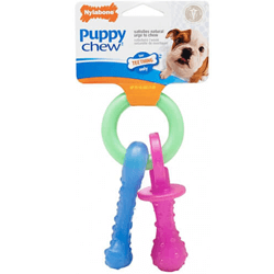 Nylabone-Flexible-Puppy-Teething-Pacifier