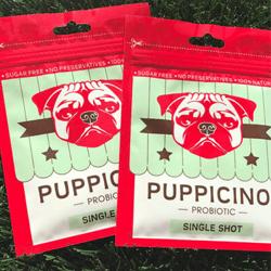 Puppicino-koffie-voor-honden